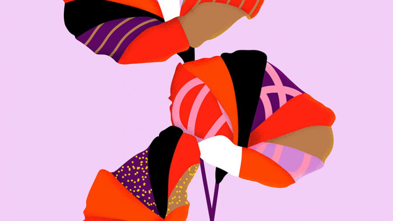 Formation Illustrator Cholet Angers nantes